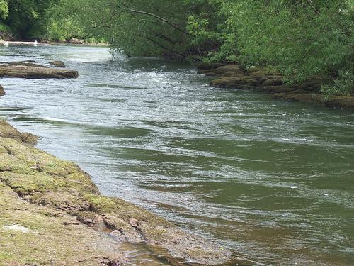 River Wye (6/6)