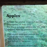 apples laurie lee About laurie lee laurie lee (1914-1997) is famous for the life he wrote about so engagingly in three volumes of autobiography both 'apples' and 'april rise' show that gift for sensuous detail, rendered so intensely as to become rhapsodic, which has made cider with rosie, in particular.