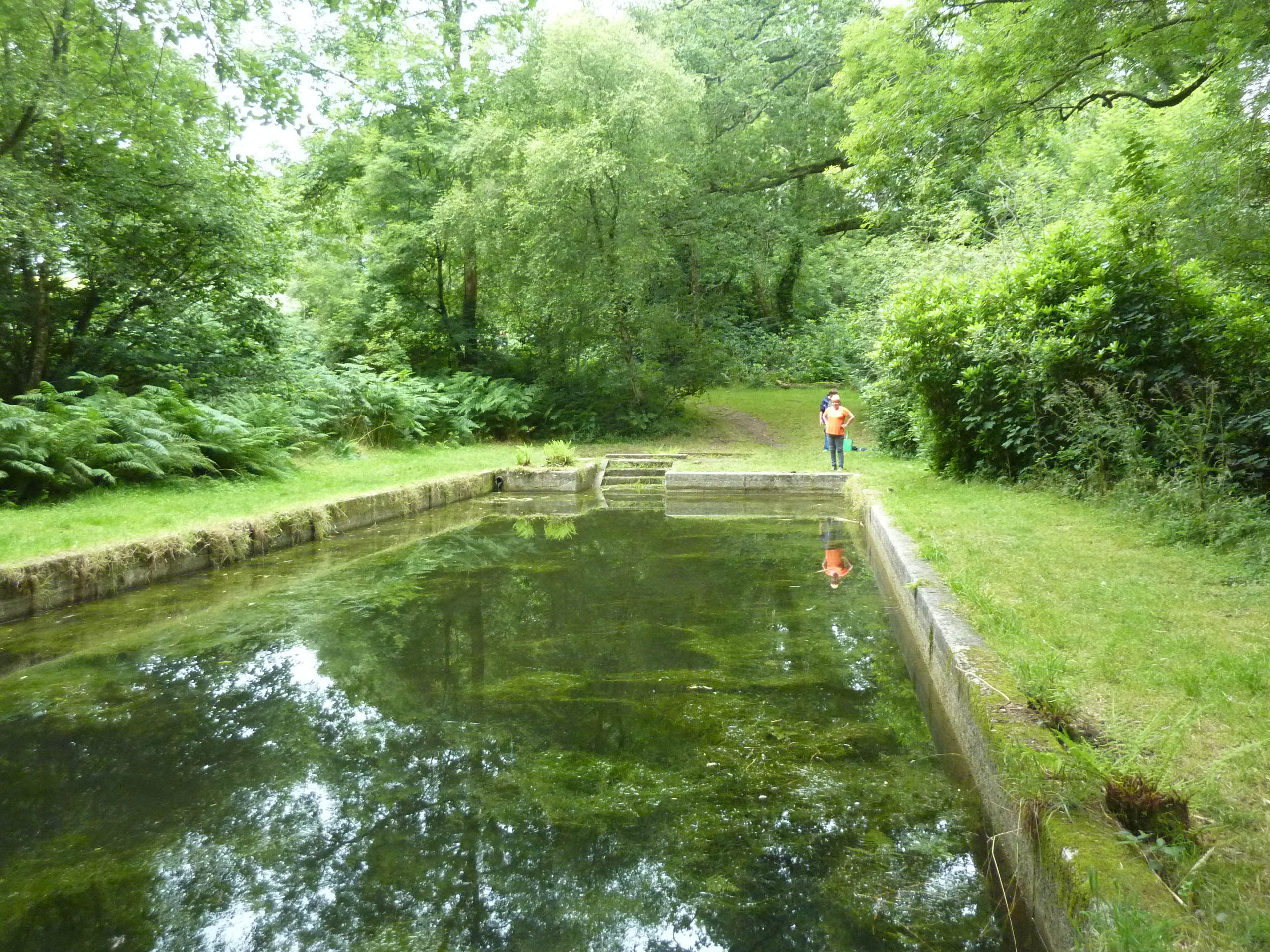The old swimming pool at lanhydrock ripe for What to do with old swimming pool